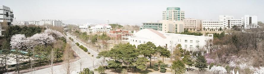 du học hàn quốc - dh suwon