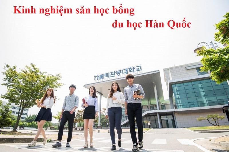 hocbongduhochanquoc