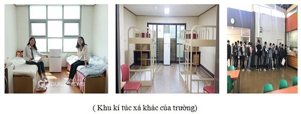 dai hoc kyung 5